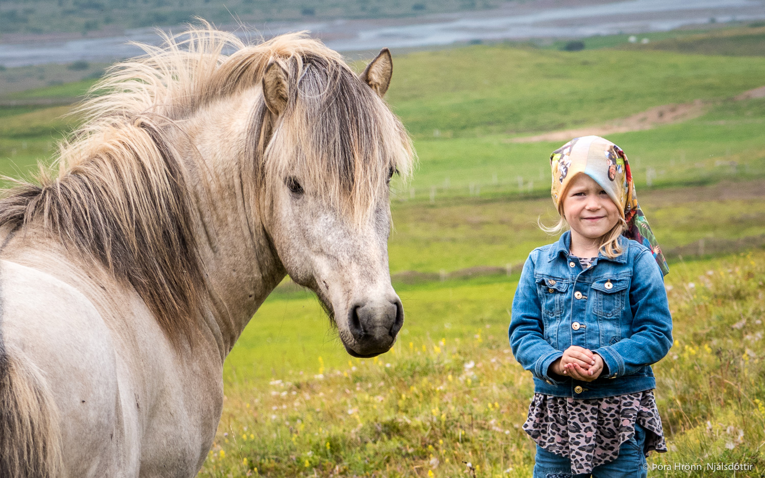 Viking Ride - Horse riding in North Iceland |Icelandic Horse Tours